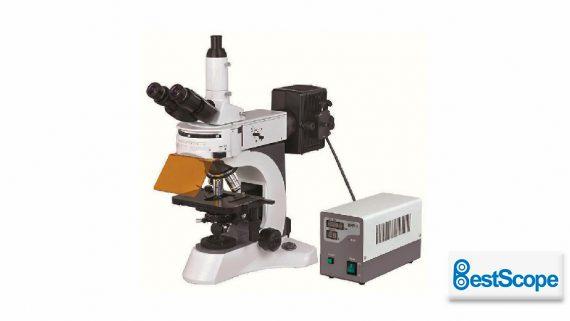 Microscopio de fluorescencia BS-7000A<br>Microscopio óptico de fluorescencia<br>CAT. BS-7000A